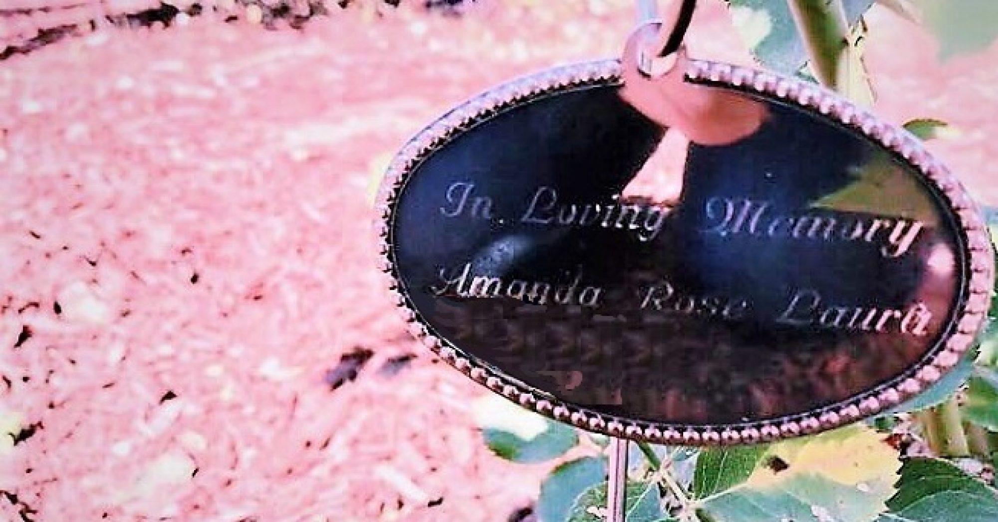 The Amanda Rose Laura Foundation